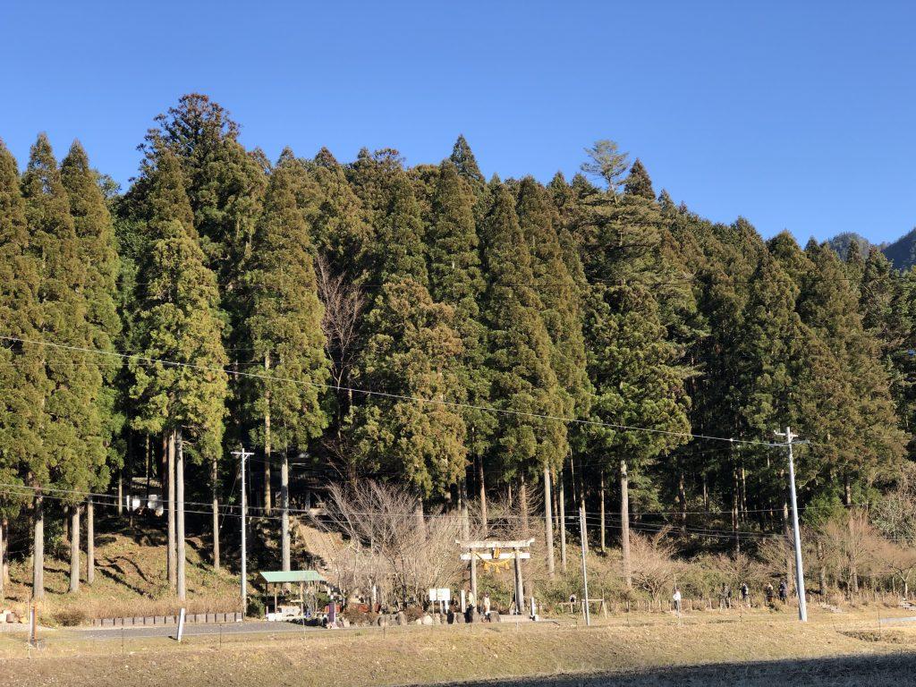 岐阜県 通称モネの池前